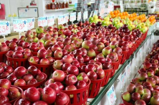 Apple Season in Quebec