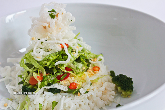 RECIPE 5 - Vegetable Salad Rice Bowl with Crispy Noodles-7